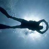 Международная выставка Мировой океан