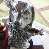 Состязания легавых собак «Верное чутье 2012»
