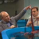 Путину представили океанариум и предложили погладить осьминога
