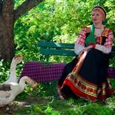 Ярмарка ремесел, Арзамасский гусь и Арбузный фестиваль