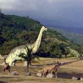 Минприроды, динозавры и «Золотое кольцо» сделают регионы популярными для туристов