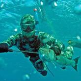 Подводная охота в Мурманской области и в Приморье