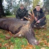 Открытие охоты в регионах и выкуп лося в Беларуси