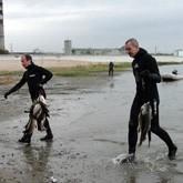 Соревнования по подводной охоте и зарыбление Ангары