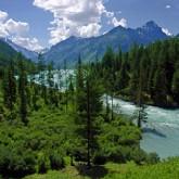 Алтай признали лучшим регионом России для туризма