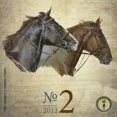 Журнал «Конный Парк»: февраль 2013