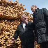 Путин раскритиковал лесную отрасль