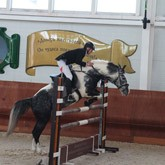 Турниры по конкуру и выездке прошли в КСК ЛЕВАДИЯ