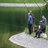Правительство отзовет законопроект о платной рыбалке
