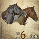 Журнал «Конный парк»: Иппотерапия и праздник в НКП «РУСЬ»