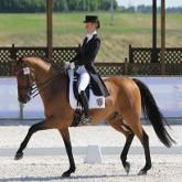 Интеграционные процессы в конном спорте