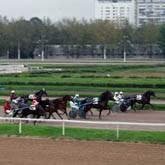 Национальный Конный Парк «РУСЬ» поддержит всероссийский чемпионат «Молодежь России»