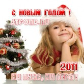 101 ответ на вопросы: Новый Год 2011 - как его встречают Россияне, и что где когда