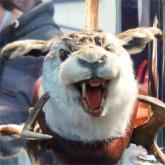 Год саблезубого кролика. Охота и рыболовство на Руси 2011 - Крупнейшая в России Выставка в своем сегменте
