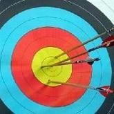 Стрельба из лука: итоги и анонсы