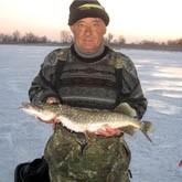 Отчеты рыболовов: вести с мест