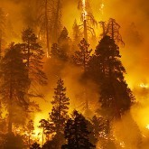 Интерактивные карты пожароопасной обстановки в России