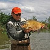 Норма вылова рыбы для рыболовов-любителей