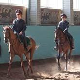 У московской полиции — лошадиная сила