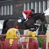 Соревнования по конкуру и конные фестивали