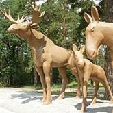 У Тамбовского лося появились семья и рога