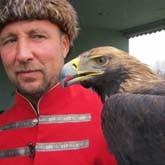 Слет сокольников и другие новости о птицах