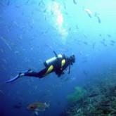 Подводное ориентирование и кладоискательство