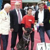 Межрегиональная Выставка охотничьих собак МГО ВФСО Динамо откроется 1 октября в Москве