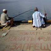 Депутаты займутся рыбалкой