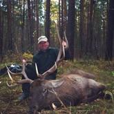 В Бурятии с первого ноября открывается сезон охоты на кабаргу