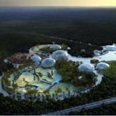 В 2012 году в Петербурге может начаться строительство нового зоопарка