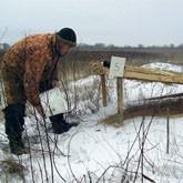 Животным Свердловской области не дадут умереть от голода
