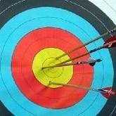 Подготовка к Олимпиаде 2012: Стрельба из лука