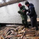 Рыболовные новости в середине декабря 2011