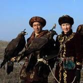 Новости о беркутах, орланах и ястребах (ВИДЕО)