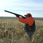 Россия заняла 8-е место по импорту огнестрельного оружия в США