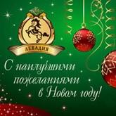 КСК Левадия подводит итоги 2011 года и поздравляет с Новым 2012 годом!