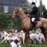 Жители Великобритании ''случайно'' охотятся на лис