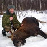 Итоги работы Минсельхозпрода в сфере охоты и другие новости охоты