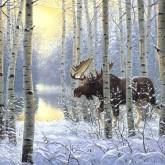 Новости охоты в середине февраля  2012 (ВИДЕО)