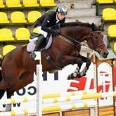 Соревнования по конному спорту: анонсы. Февраль 2012