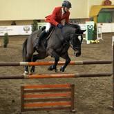 Новые лошади и новые победы КСК Левадия
