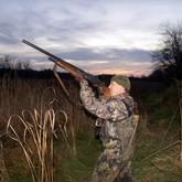 Новости об охоте и охотничьих билетах