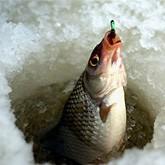 Новости рыбалки и охоты в середине марта 2012