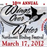 10-й Фестиваль бердинга Крылья над Водой WOW открывается в Блэйне (Вашингтон)