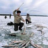 ОСАГО для рыболовов и спасение рыбаков в регионах