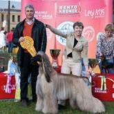 Международная выставка собак всех пород ЕВРАЗИЯ -2012 пройдет в Крокус Экспо