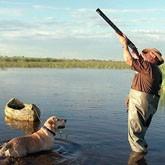 Охотничьи новости в конце марта  2012