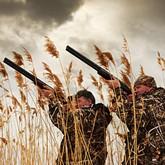 Экзамен для охотников и другие новости охоты