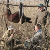 Реформа охотничьего хозяйства  в Казахстане и запрет охоты на сайгаков на 8 лет